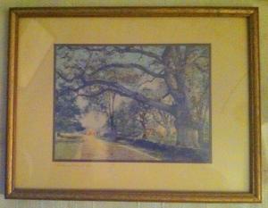Wayside Oak